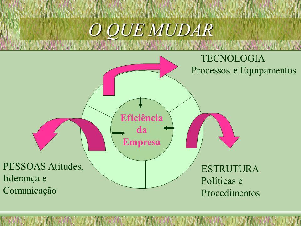 O QUE MUDAR Eficiência da Empresa TECNOLOGIA Processos e Equipamentos ESTRUTURA Políticas e Procedimentos PESSOAS Atitudes, liderança e Comunicação