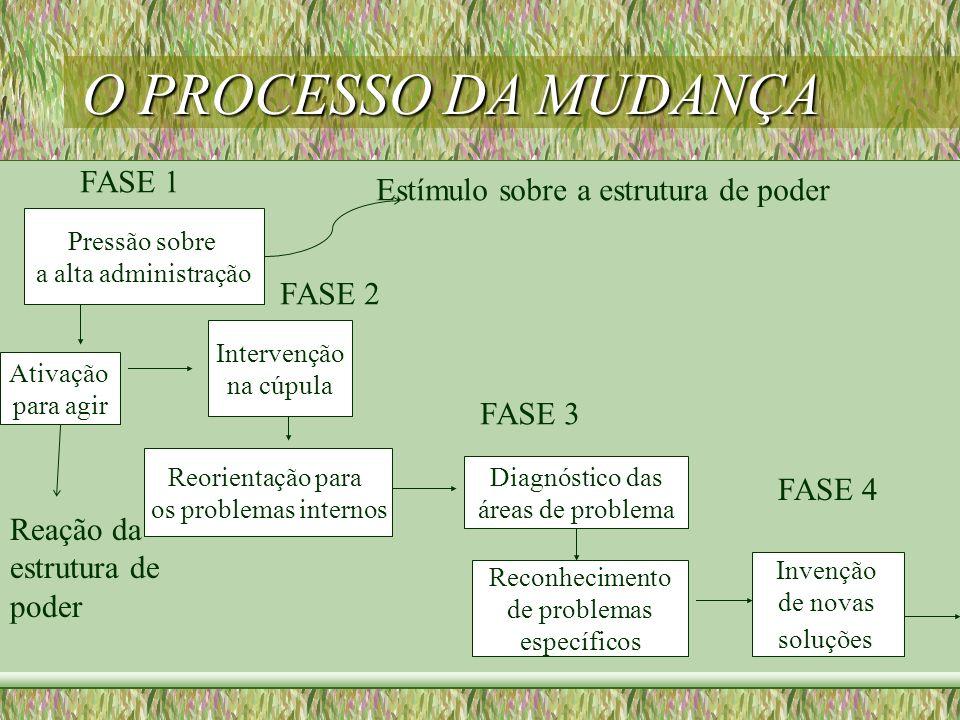 O PROCESSO DA MUDANÇA Pressão sobre a alta administração Ativação para agir Intervenção na cúpula Reorientação para os problemas internos Diagnóstico
