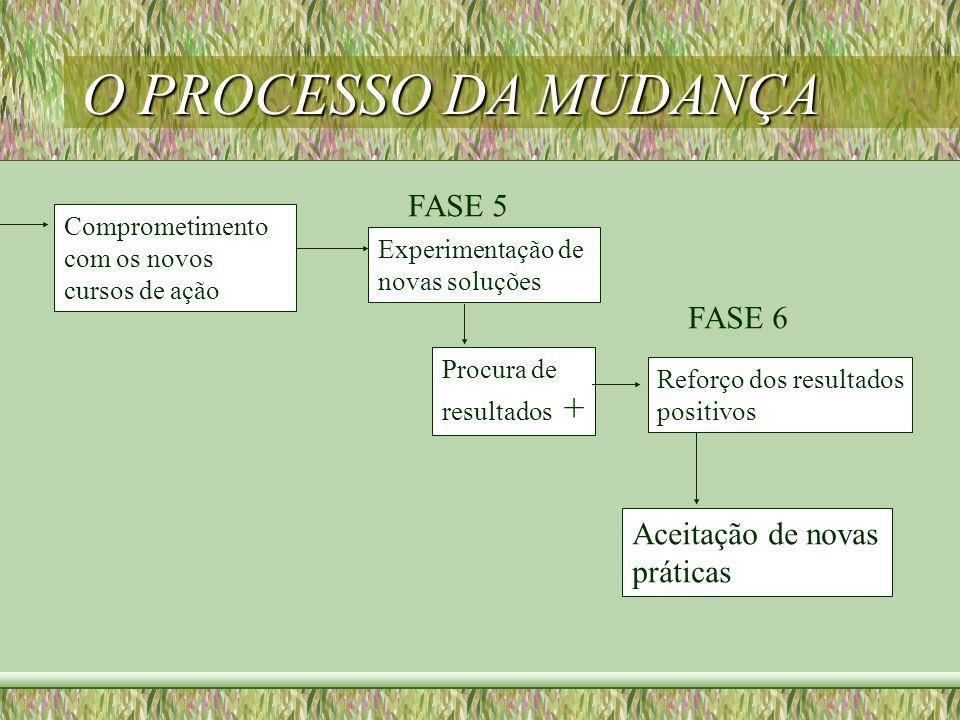 O PROCESSO DA MUDANÇA Comprometimento com os novos cursos de ação Experimentação de novas soluções FASE 5 Procura de resultados + Reforço dos resultad