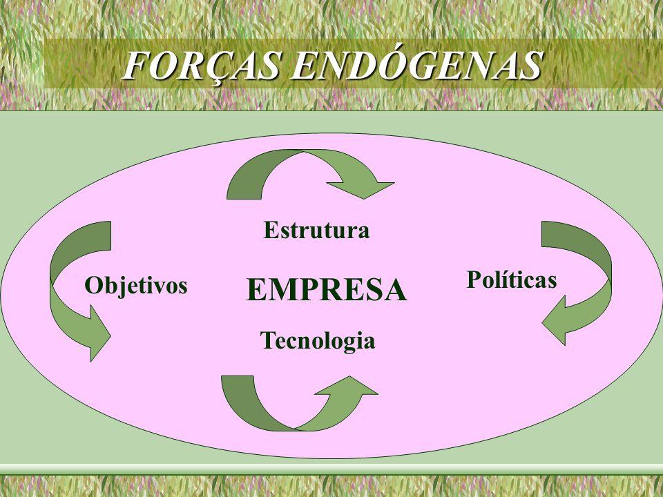 FORÇAS ENDÓGENAS Estrutura Políticas Tecnologia Objetivos EMPRESA
