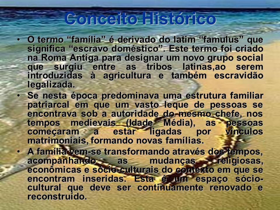 Conceito Histórico O termo família é derivado do latim famulus que significa escravo doméstico. Este termo foi criado na Roma Antiga para designar um