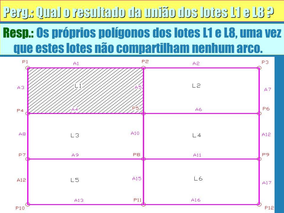 Resp.: Os próprios polígonos dos lotes L1 e L8, uma vez que estes lotes não compartilham nenhum arco. Perg.: Qual o resultado da união dos lotes L1 e