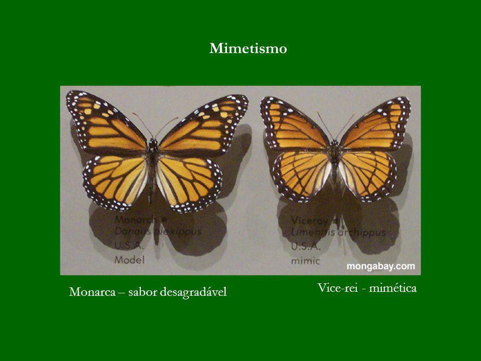 Monarca – sabor desagradável Vice-rei - mimética Mimetismo