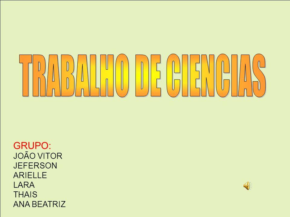 GRUPO: JOÃO VITOR JEFERSON ARIELLE LARA THAIS ANA BEATRIZ