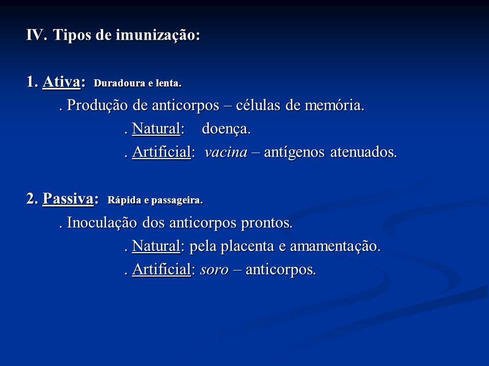 IV. Tipos de imunização: 1. Ativa: Duradoura e lenta.. Produção de anticorpos – células de memória.. Natural: doença.. Artificial: vacina – antígenos