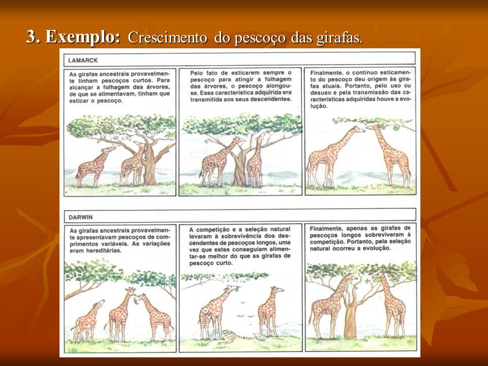 3. Exemplo: Crescimento do pescoço das girafas.