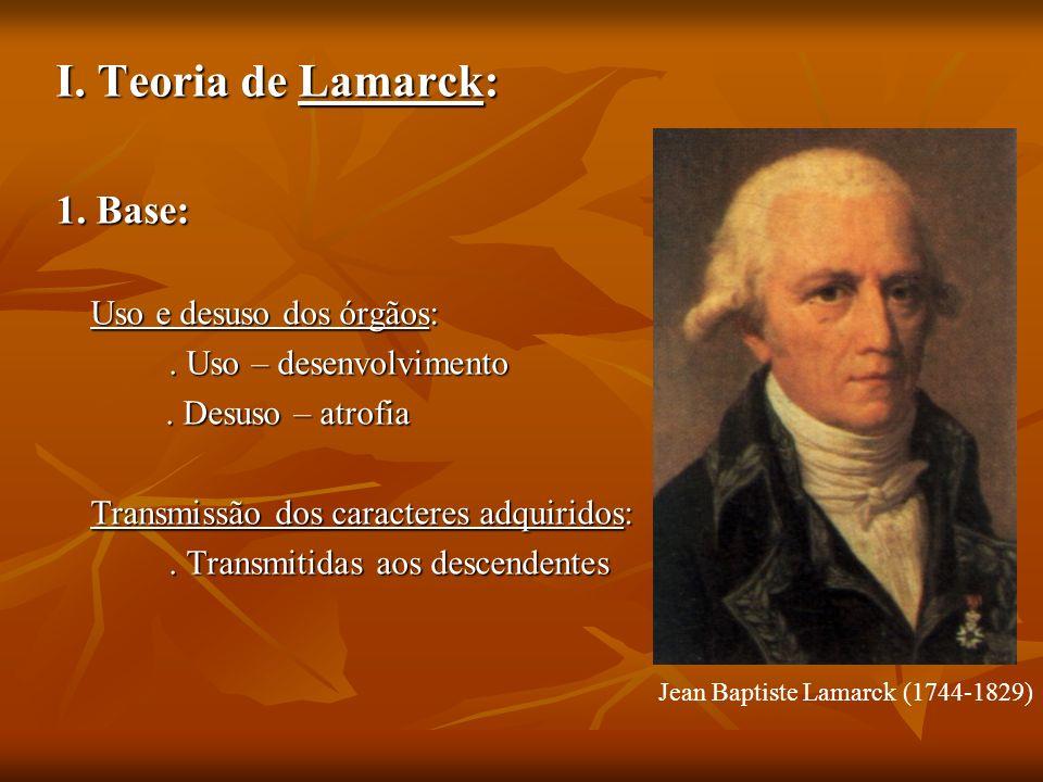 I. Teoria de Lamarck: 1. Base: Uso e desuso dos órgãos: Uso e desuso dos órgãos:. Uso – desenvolvimento. Uso – desenvolvimento. Desuso – atrofia. Desu