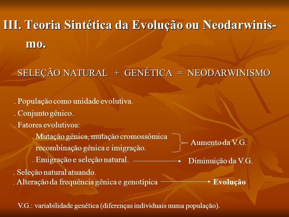 III. Teoria Sintética da Evolução ou Neodarwinis- mo. mo. SELEÇÃO NATURAL + GENÉTICA = NEODARWINISMO SELEÇÃO NATURAL + GENÉTICA = NEODARWINISMO. Popul