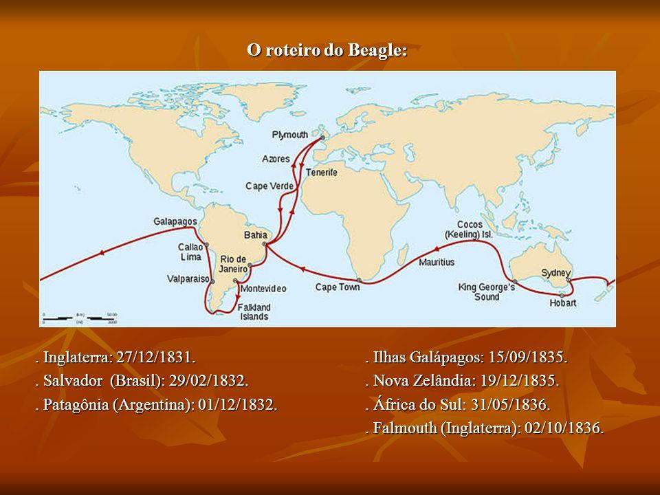 O roteiro do Beagle:. Inglaterra: 27/12/1831.. Ilhas Galápagos: 15/09/1835.. Salvador (Brasil): 29/02/1832.. Nova Zelândia: 19/12/1835.. Patagônia (Ar