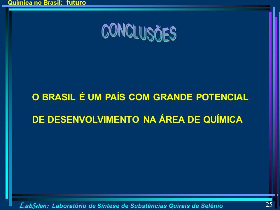 L ab S e len : Laboratório de Síntese de Substâncias Quirais de Selênio 25 Química no Brasil: futuro O BRASIL É UM PAÍS COM GRANDE POTENCIAL DE DESENVOLVIMENTO NA ÁREA DE QUÍMICA
