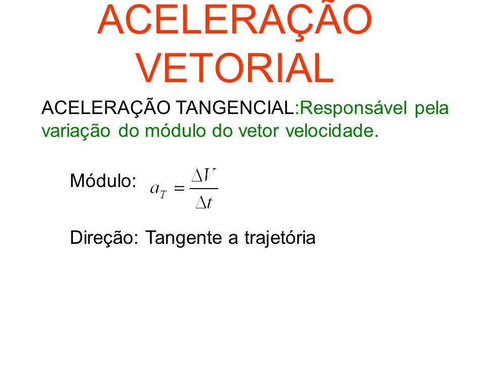 VETOR VELOCIDADE É o vetor que representa a direção e o sentido do movimento em todos os pontos da trajetória -Módulo: Direção:tangente a trajetória S