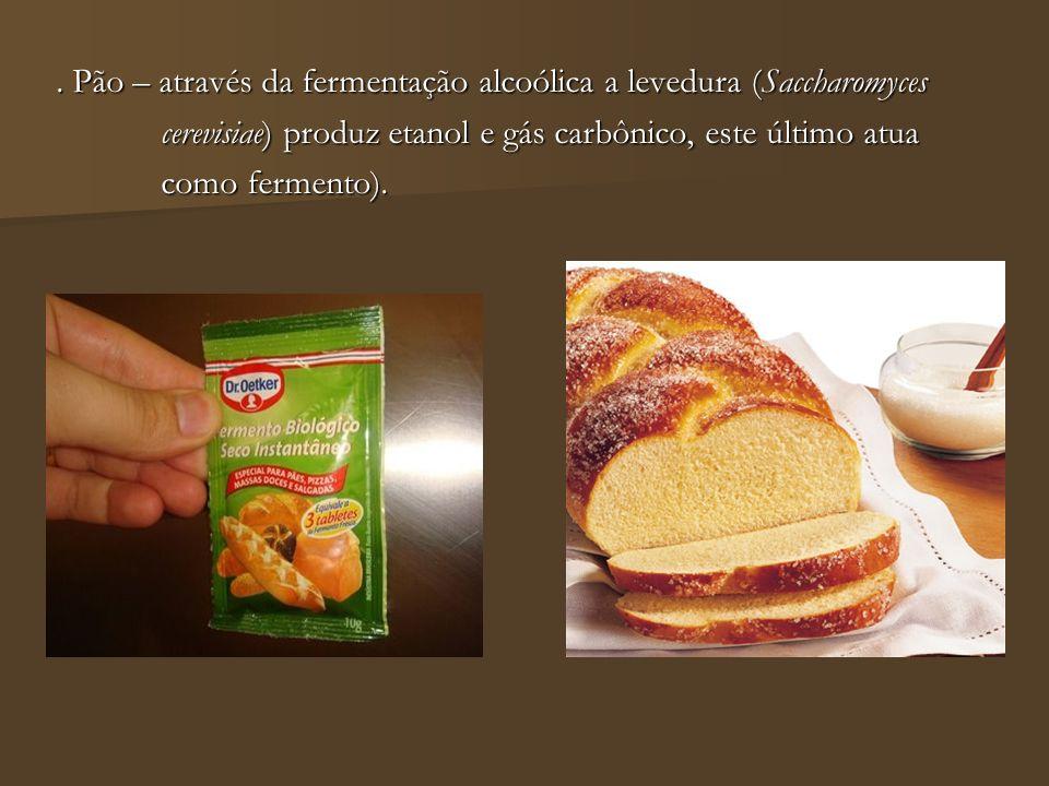 . Pão – através da fermentação alcoólica a levedura (Saccharomyces cerevisiae) produz etanol e gás carbônico, este último atua cerevisiae) produz etan