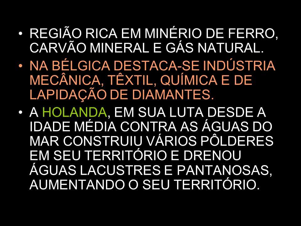 REGIÃO RICA EM MINÉRIO DE FERRO, CARVÃO MINERAL E GÁS NATURAL.