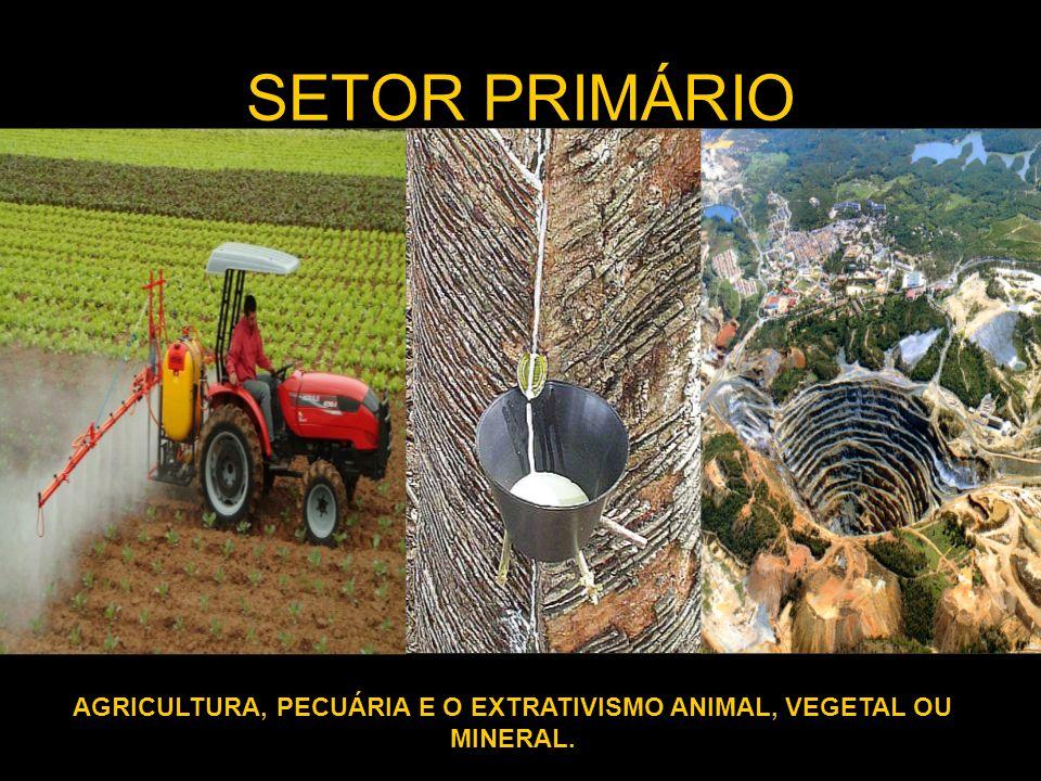 SETOR PRIMÁRIO AGRICULTURA, PECUÁRIA E O EXTRATIVISMO ANIMAL, VEGETAL OU MINERAL.