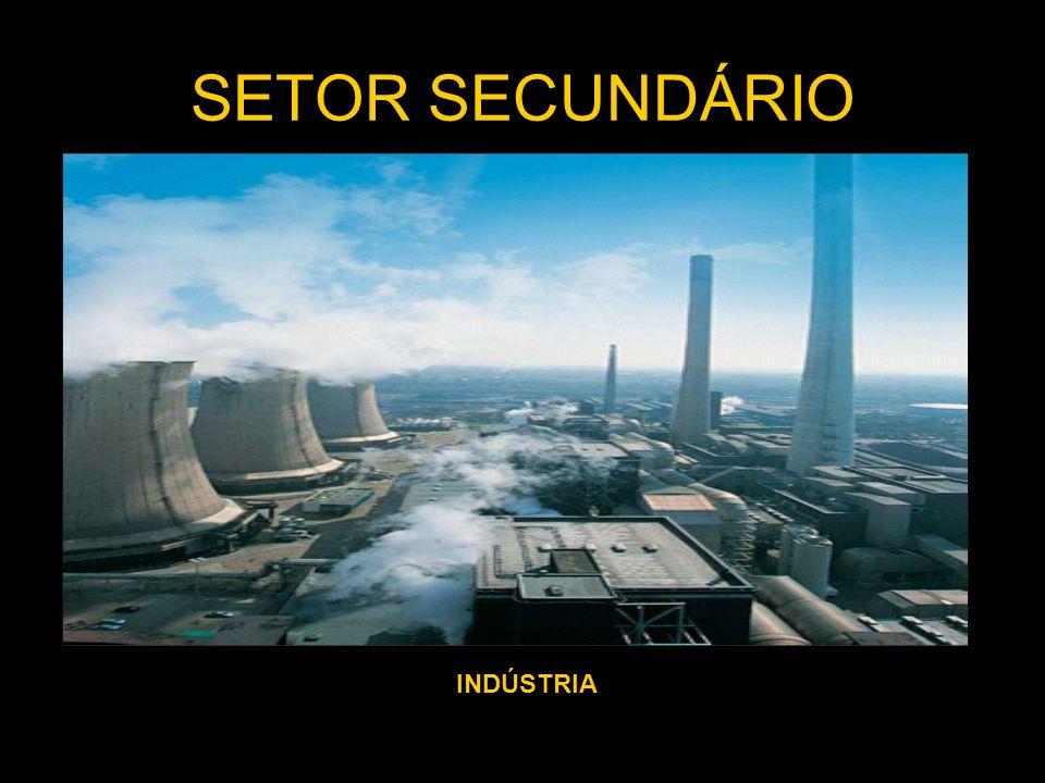SETOR SECUNDÁRIO INDÚSTRIA