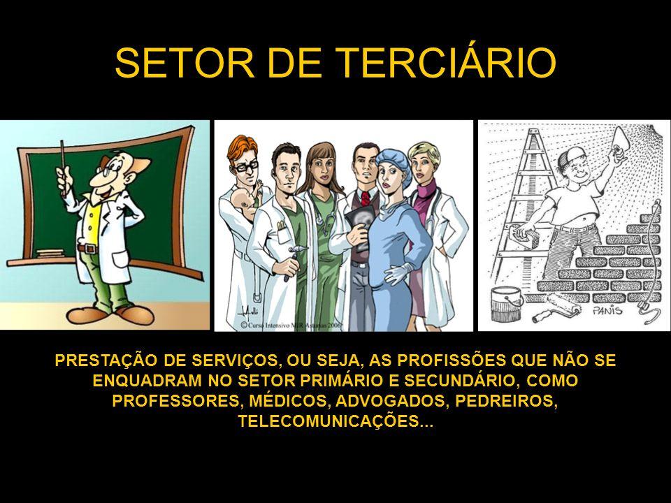 SETOR DE TERCIÁRIO PRESTAÇÃO DE SERVIÇOS, OU SEJA, AS PROFISSÕES QUE NÃO SE ENQUADRAM NO SETOR PRIMÁRIO E SECUNDÁRIO, COMO PROFESSORES, MÉDICOS, ADVOGADOS, PEDREIROS, TELECOMUNICAÇÕES...