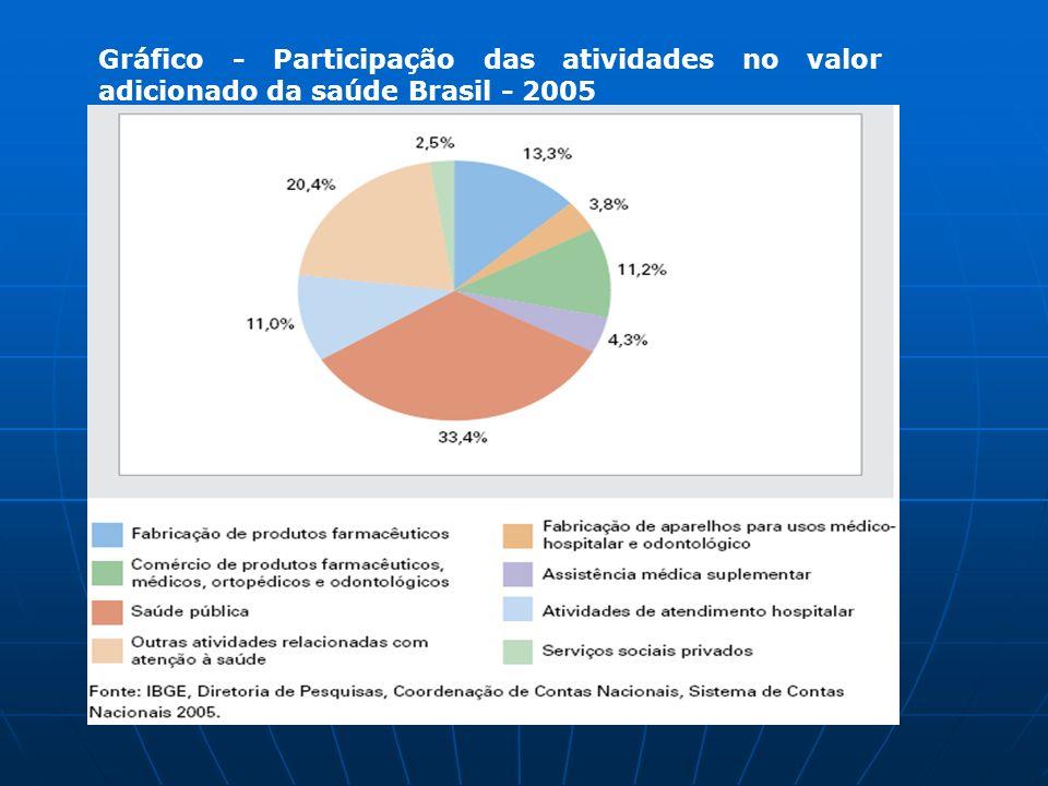 Gráfico - Participação das atividades no valor adicionado da saúde Brasil - 2005