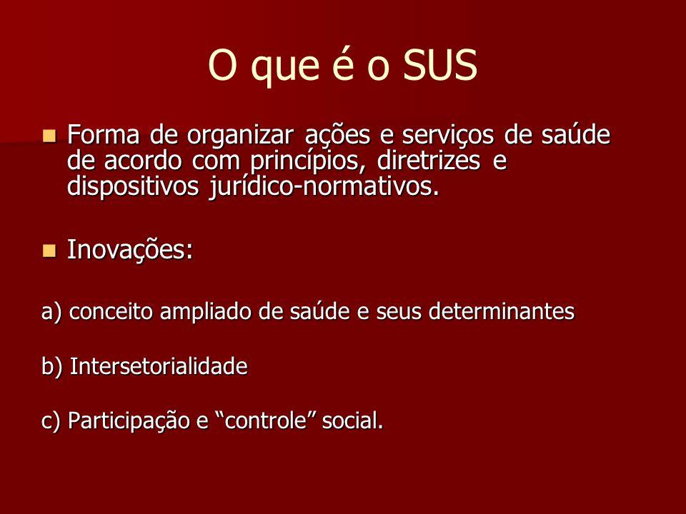 O que é o SUS Forma de organizar ações e serviços de saúde de acordo com princípios, diretrizes e dispositivos jurídico-normativos. Forma de organizar