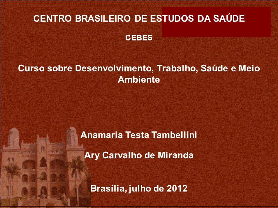 CENTRO BRASILEIRO DE ESTUDOS DA SAÚDE CEBES Curso sobre Desenvolvimento, Trabalho, Saúde e Meio Ambiente Anamaria Testa Tambellini Ary Carvalho de Miranda Brasília, julho de 2012