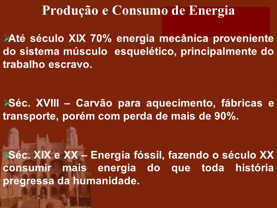 Produção e Consumo de Energia Até século XIX 70% energia mecânica proveniente do sistema músculo esquelético, principalmente do trabalho escravo.