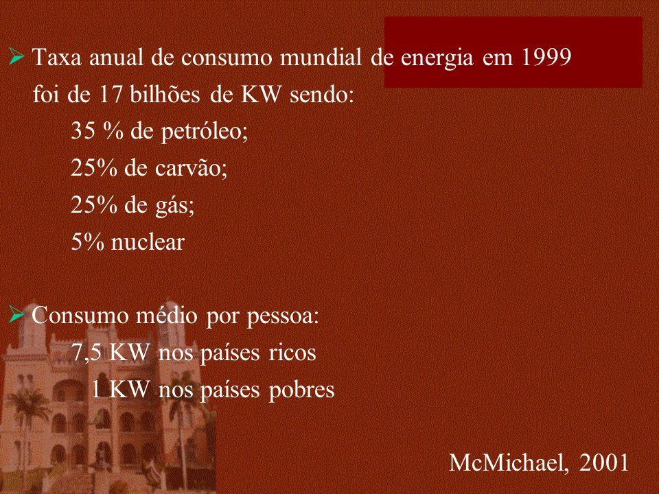Taxa anual de consumo mundial de energia em 1999 foi de 17 bilhões de KW sendo: 35 % de petróleo; 25% de carvão; 25% de gás; 5% nuclear Consumo médio por pessoa: 7,5 KW nos países ricos 1 KW nos países pobres McMichael, 2001
