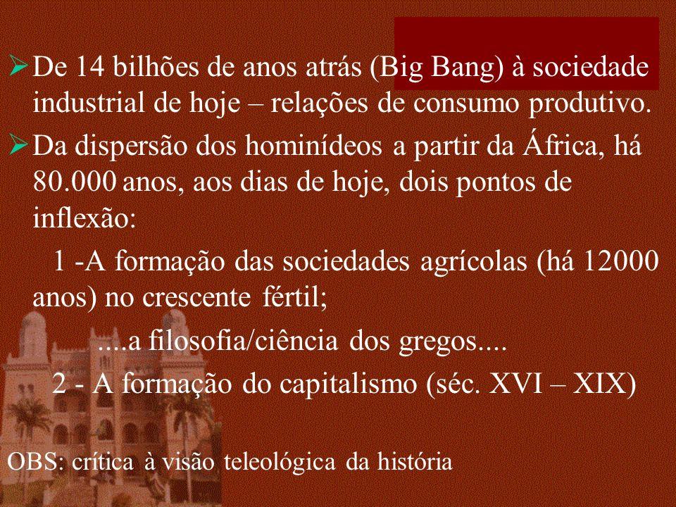 De 14 bilhões de anos atrás (Big Bang) à sociedade industrial de hoje – relações de consumo produtivo. Da dispersão dos hominídeos a partir da África,