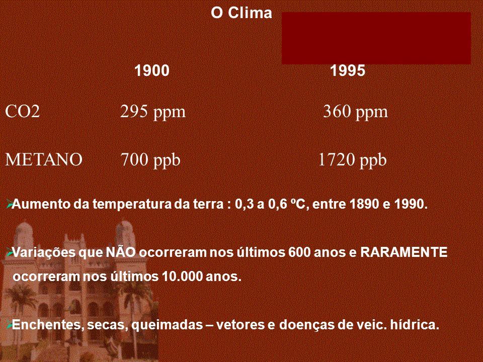 O Clima 1900 1995 CO2 295 ppm 360 ppm METANO 700 ppb 1720 ppb Aumento da temperatura da terra : 0,3 a 0,6 ºC, entre 1890 e 1990.