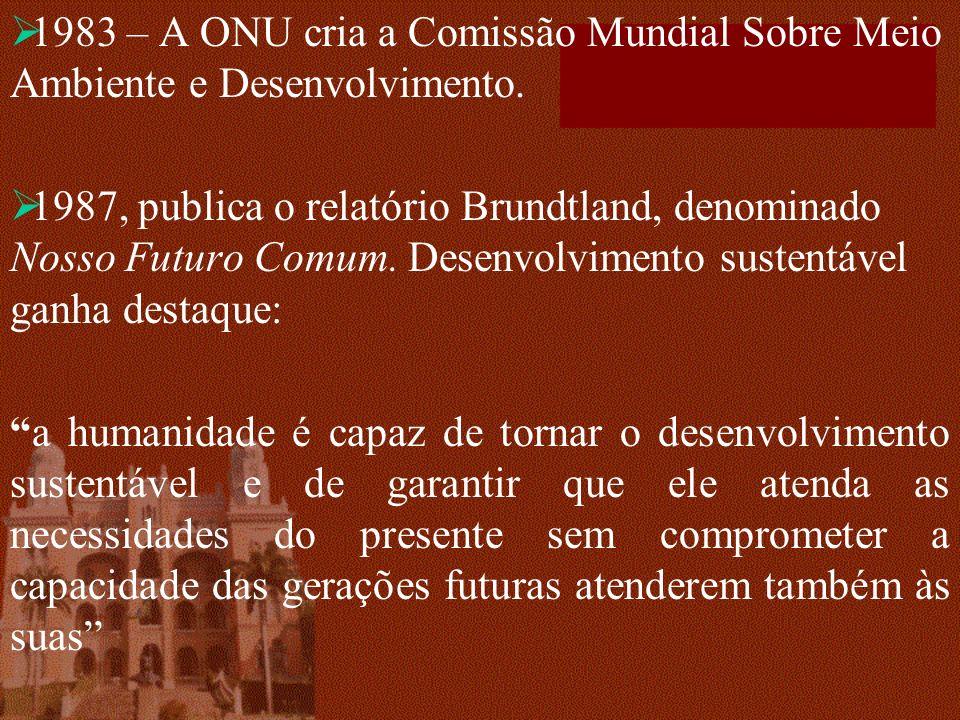 1983 – A ONU cria a Comissão Mundial Sobre Meio Ambiente e Desenvolvimento. 1987, publica o relatório Brundtland, denominado Nosso Futuro Comum. Desen