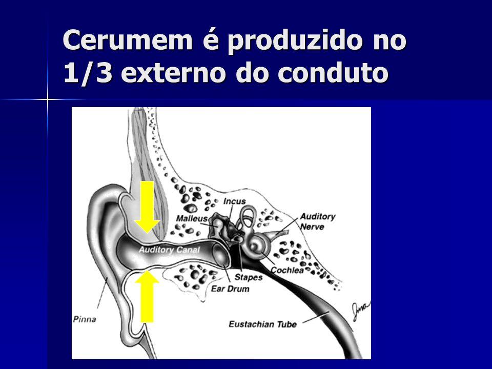 Cerumem é produzido no 1/3 externo do conduto