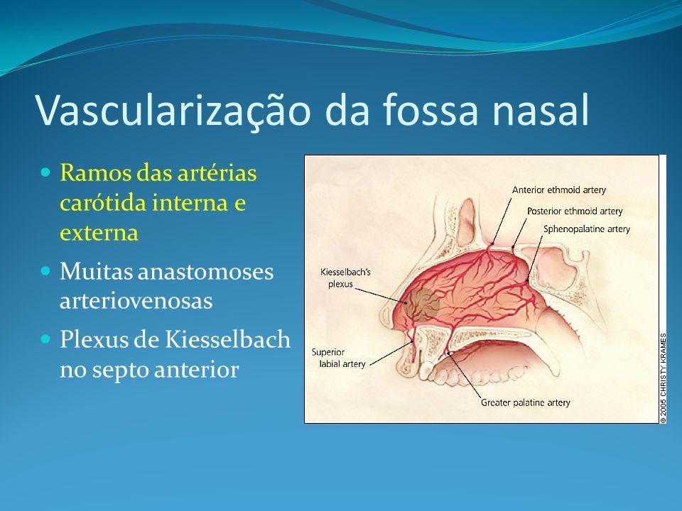 Epistaxe: Identifique o local de sangramento ANTERIOR Crianças Plexo de K Tratamento: 1) Pressão digital 15-20 min.