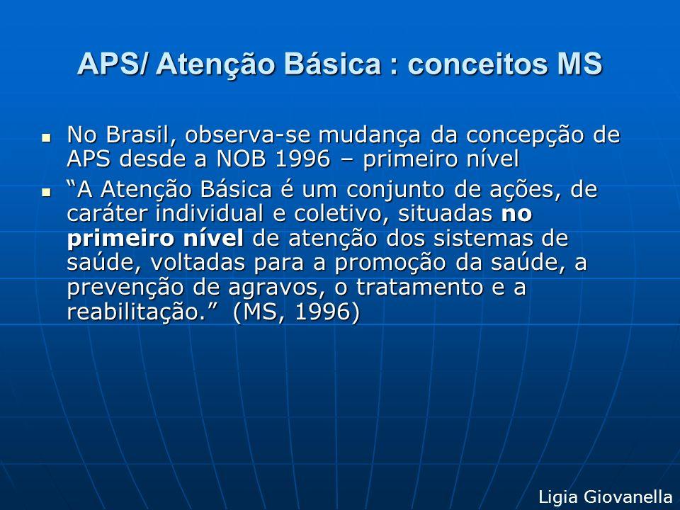 Conceitos APS/Atenção Básica no Brasil