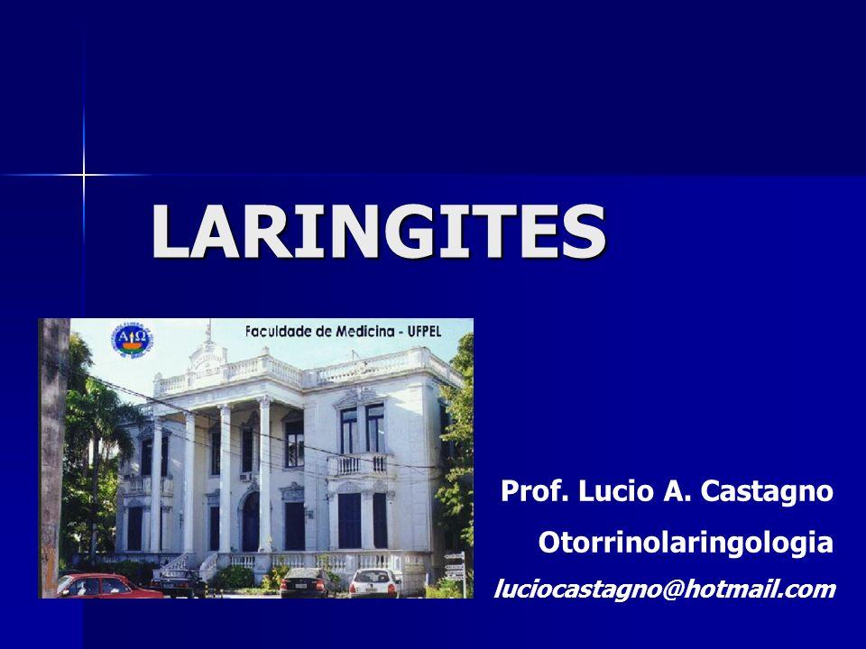 LARINGITES Prof. Lucio A. Castagno Otorrinolaringologia luciocastagno@hotmail.com