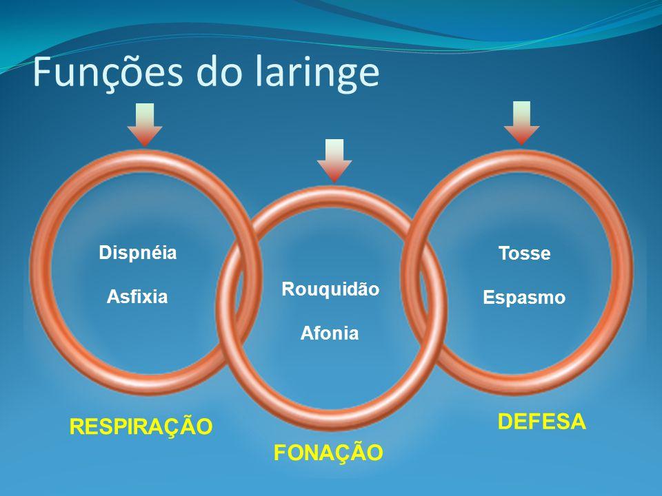 Dispnéia Asfixia Rouquidão Afonia Tosse Espasmo RESPIRAÇÃO Funções do laringe FONAÇÃO DEFESA