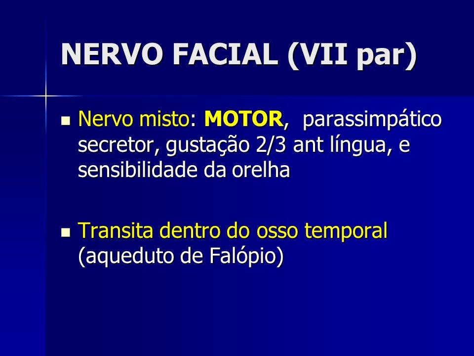 NERVO FACIAL (VII par) Nervo misto: MOTOR, parassimpático secretor, gustação 2/3 ant língua, e sensibilidade da orelha Nervo misto: MOTOR, parassimpát