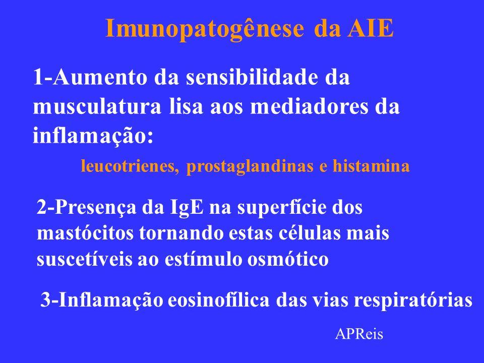 Os 4 Tipos de Hipersensibilidades Tipo 1 IgE Antígeno Mastócito Receptor Fc Histamina Leucotrienes Prostaglandinas Degranulação TH-2 Citocinas IL-4 IL-5 IL-6 IgE GM –CSF; TNFα IL-8 ; IL-9 Selectinas Integrinas Moléculas de Adesão Eosinófilos IL-5 IL-9 APReis Enzimas Proteolíticas IL-4 FcεRI