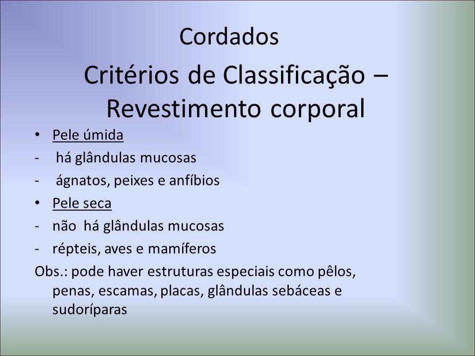 Cordados Critérios de Classificação – Revestimento corporal Pele úmida - há glândulas mucosas - ágnatos, peixes e anfíbios Pele seca -não há glândulas