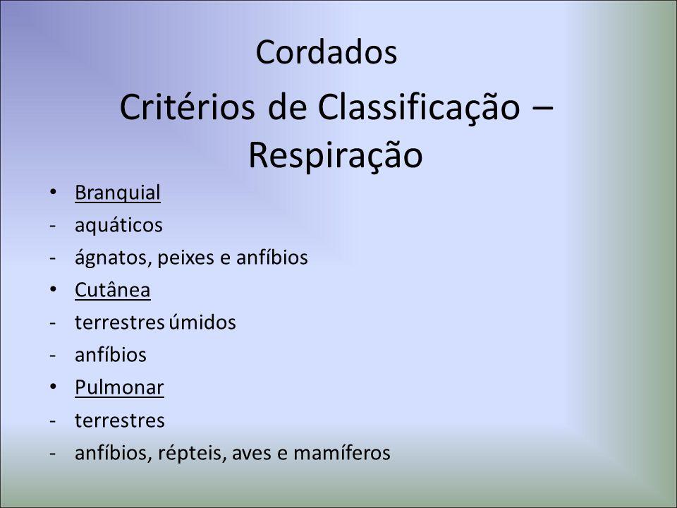 Cordados Critérios de Classificação – Respiração Branquial -aquáticos -ágnatos, peixes e anfíbios Cutânea -terrestres úmidos -anfíbios Pulmonar -terre