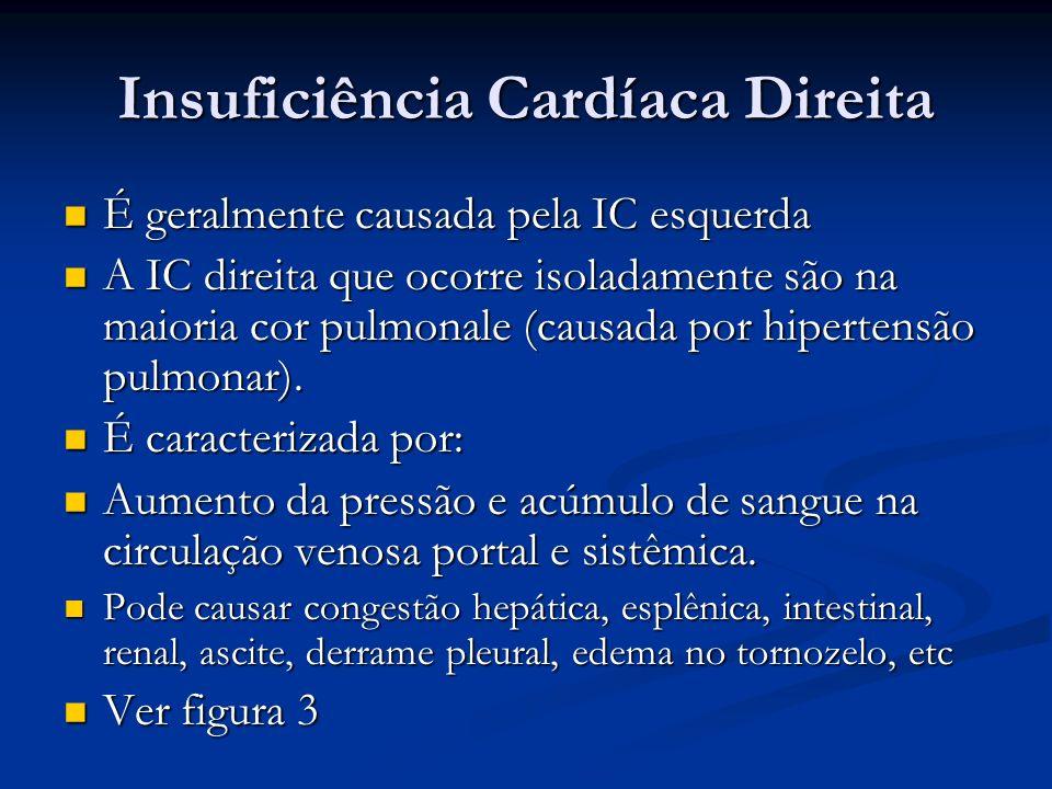 Insuficiência Cardíaca Direita É geralmente causada pela IC esquerda É geralmente causada pela IC esquerda A IC direita que ocorre isoladamente são na