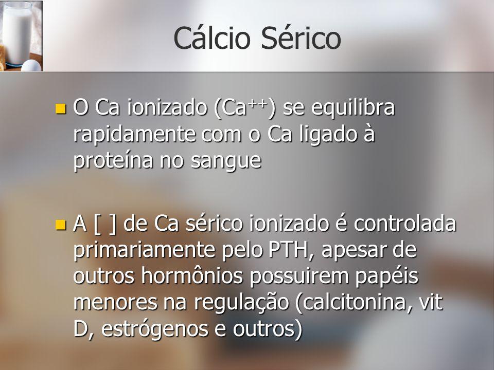 Cálcio Sérico O Ca ionizado (Ca ++ ) se equilibra rapidamente com o Ca ligado à proteína no sangue O Ca ionizado (Ca ++ ) se equilibra rapidamente com