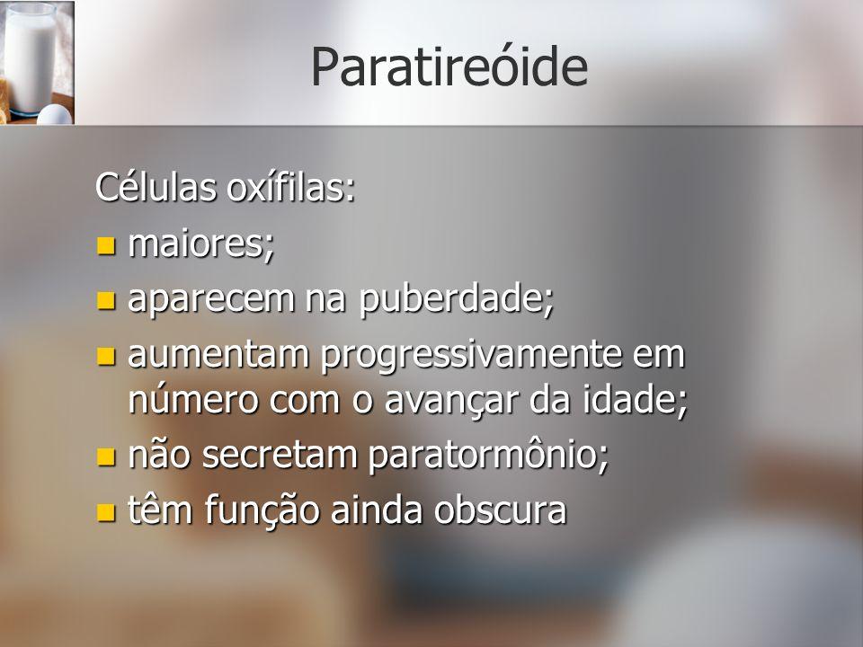Paratireóide Células oxífilas: maiores; maiores; aparecem na puberdade; aparecem na puberdade; aumentam progressivamente em número com o avançar da id