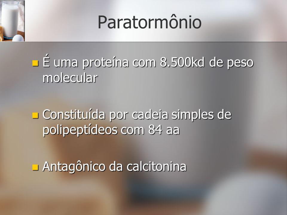 Paratormônio É uma proteína com 8.500kd de peso molecular É uma proteína com 8.500kd de peso molecular Constituída por cadeia simples de polipeptídeos