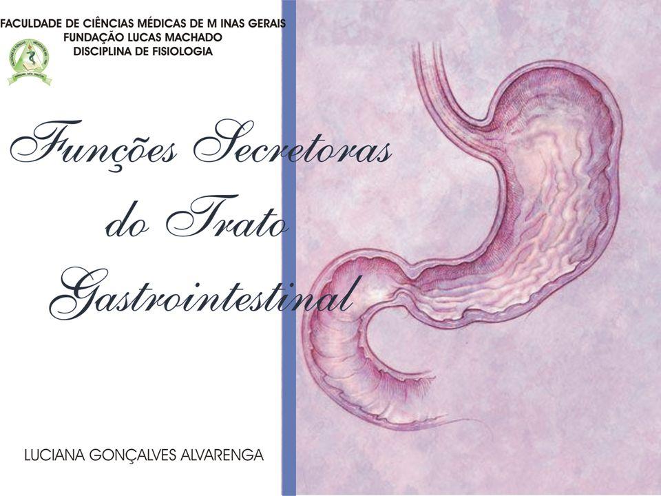 INTRODUÇÃO -Glândulas secretoras de muco: desde a boca até o ânus -Glândulas secretoras de enzimas digestivas: desde a boca até o íleo distal