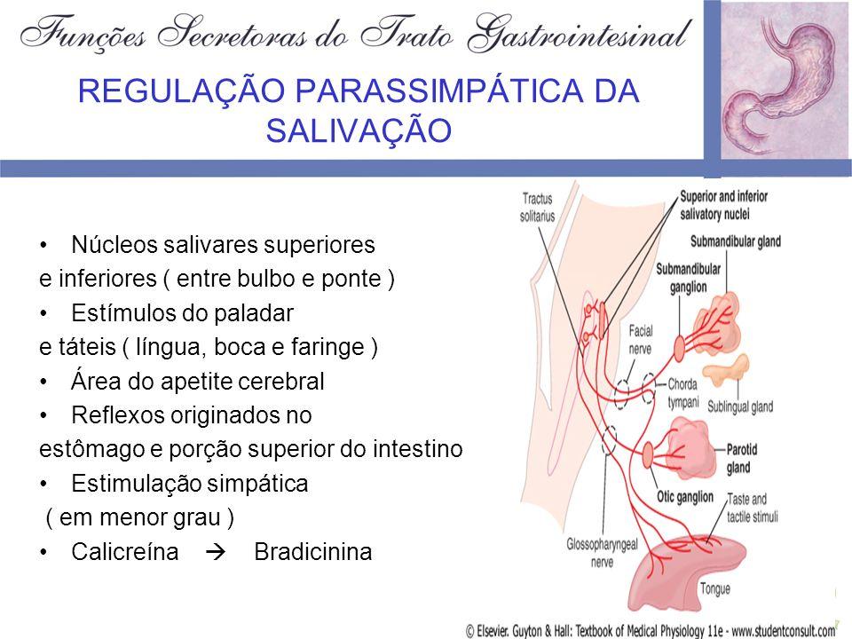 SECREÇÃO ESOFÁGICA Secreções totalmente mucóides ( auxiliam na deglutição ) Glândulas mucosas: –Simples ( toda extensão do órgão ) –Compostas ( porção inicial e próximo ao cárdia )