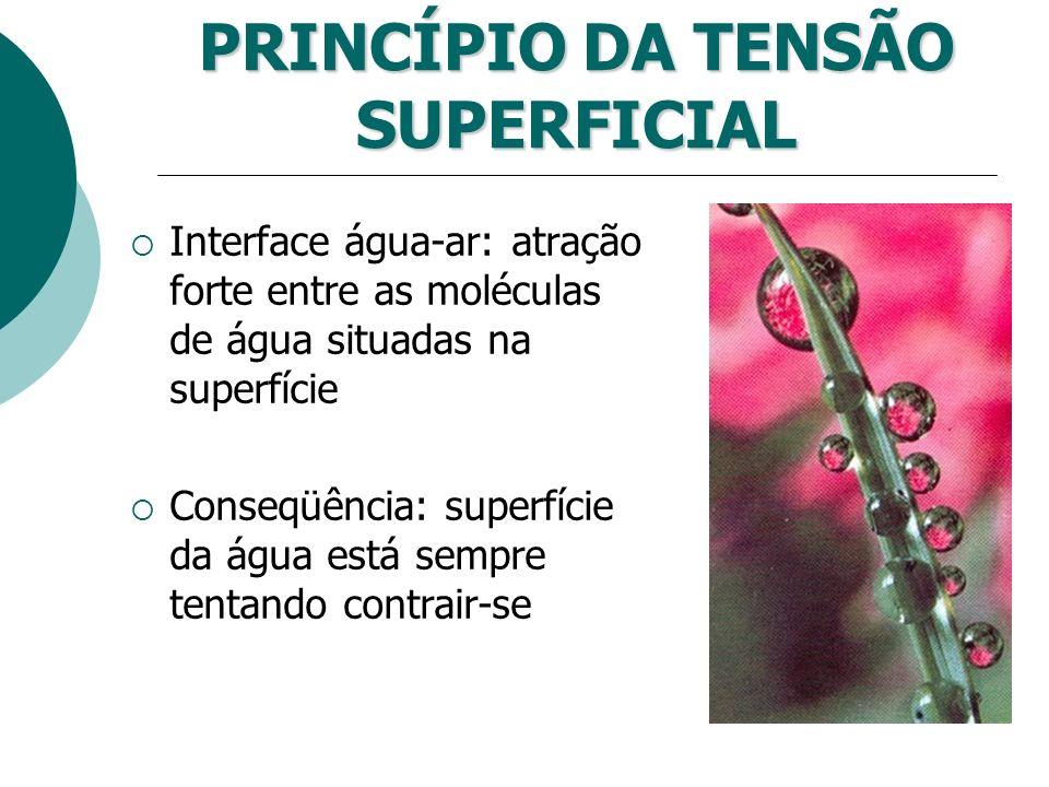 PRINCÍPIO DA TENSÃO SUPERFICIAL Interface água-ar: atração forte entre as moléculas de água situadas na superfície Conseqüência: superfície da água es