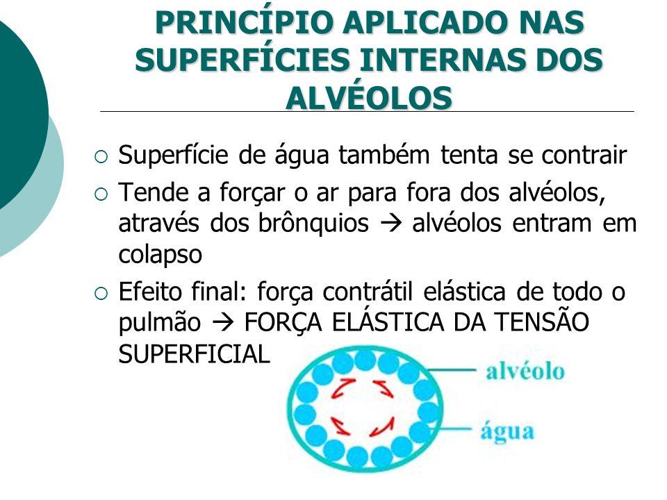 PRINCÍPIO APLICADO NAS SUPERFÍCIES INTERNAS DOS ALVÉOLOS Superfície de água também tenta se contrair Tende a forçar o ar para fora dos alvéolos, atrav