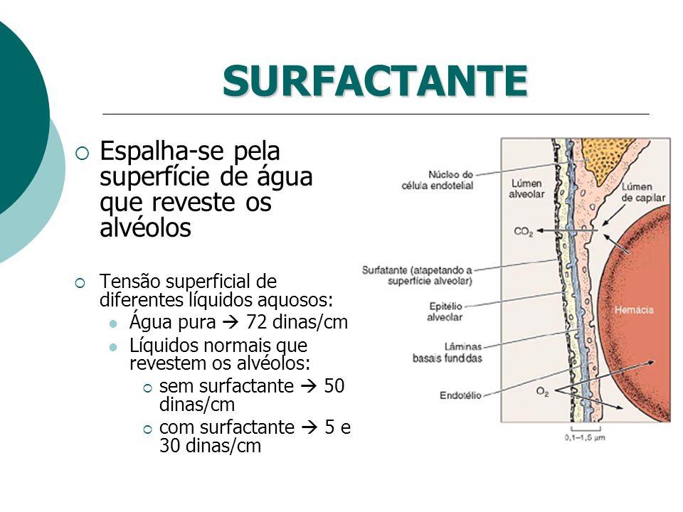 SURFACTANTE Espalha-se pela superfície de água que reveste os alvéolos Tensão superficial de diferentes líquidos aquosos: Água pura 72 dinas/cm Líquid