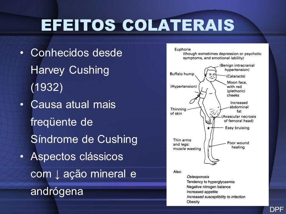 PRINCIPAIS EFEITOS ADVERSOS Intolerância aos CH, disglicemias e DM Obesidade LDL e VLDL aterosclerose Diminuição da massa muscular (escápula e pelve) excreção de Na +, K +, H +, amônia e fosfatos em urina Pele fina, atrófica e com fragilidade vascular da resposta inflamatória e imunológica (Vírus, fungos e estrongilóides)