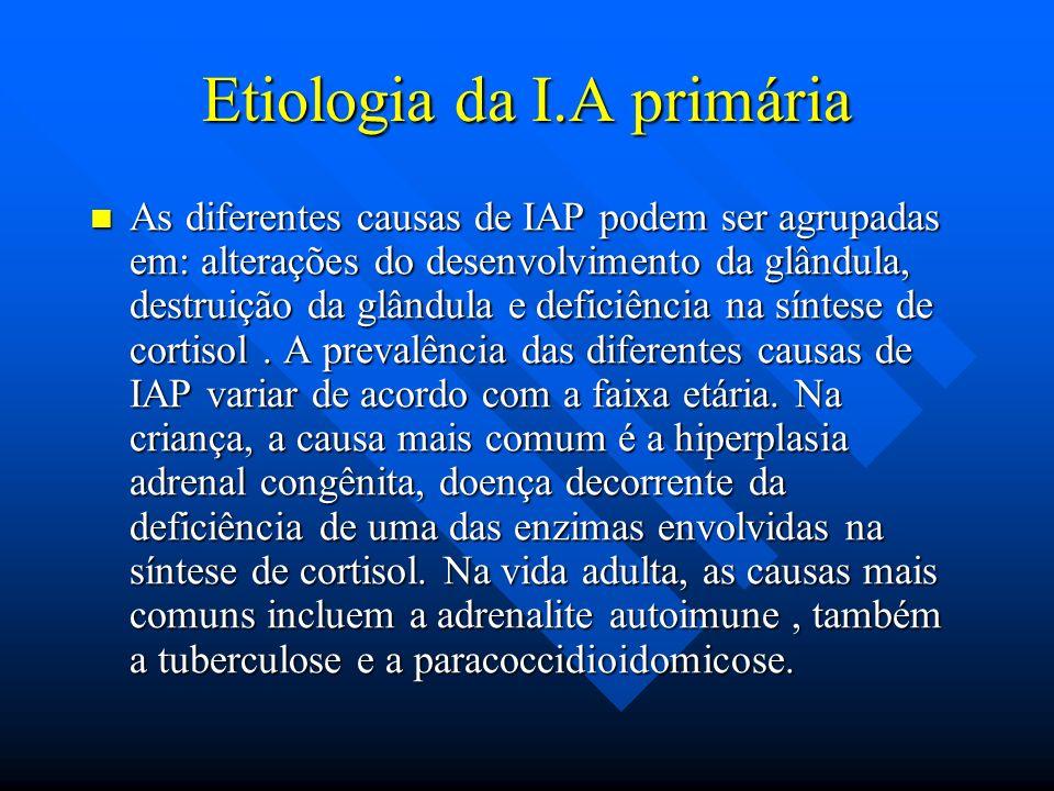 Etiologia da I.A primária As diferentes causas de IAP podem ser agrupadas em: alterações do desenvolvimento da glândula, destruição da glândula e defi