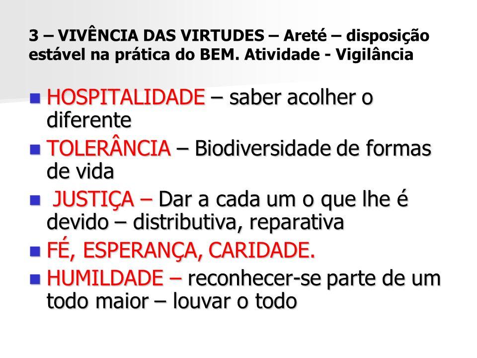 3 – VIVÊNCIA DAS VIRTUDES – Areté – disposição estável na prática do BEM. Atividade - Vigilância HOSPITALIDADE – saber acolher o diferente HOSPITALIDA