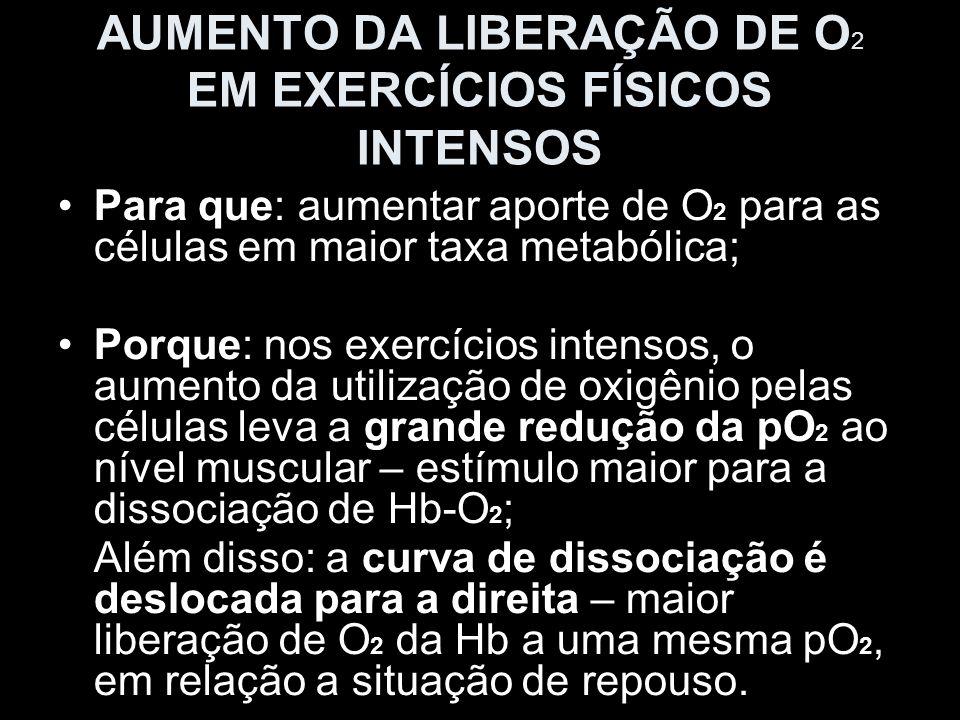 AUMENTO DA LIBERAÇÃO DE O 2 EM EXERCÍCIOS FÍSICOS INTENSOS Para que: aumentar aporte de O 2 para as células em maior taxa metabólica; Porque: nos exer
